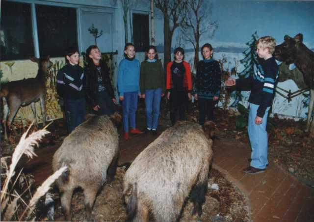 История создания музея природы в СШ №1.